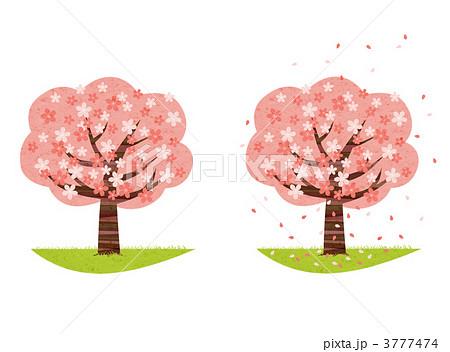 桜の木のイラスト素材 3777474 Pixta