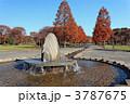 舎人公園 紅葉 公園の写真 3787675