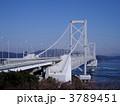 鳴門海峡 大鳴門橋 吊り橋の写真 3789451