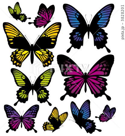 蝶のイラスト素材 3828201 Pixta