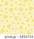 菊 背景 植物のイラスト 3850734