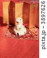 金屏風 巳年 白蛇の写真 3897626