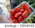 苺パック 3904048