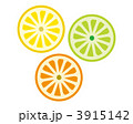 柑橘系 蜜柑 ライムのイラスト 3915142