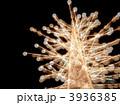 ホワイトイルミネーション(多重露光) 3936385