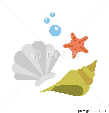 貝殻 夏イメージ 貝類のイラスト素材 3961271 Pixta