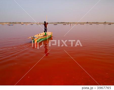 セネガル:ラック・ローズ 3967765