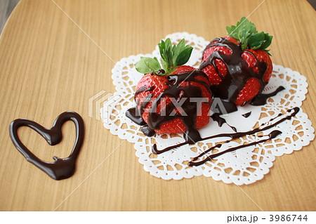 チョコいちごの写真素材 [3986744] - PIXTA