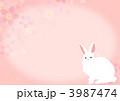 桜とうさぎ 3987474