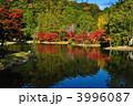 浄土庭園 白水阿弥陀堂 池の写真 3996087