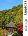 浄土庭園 阿弥陀堂 白水阿弥陀堂の写真 3996088