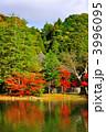 浄土庭園 阿弥陀堂 白水阿弥陀堂の写真 3996095