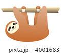 ナマケモノ なまけもの 動物のイラスト 4001683