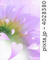 ピンクのハートと花 4028380