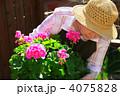 ホビー 趣味 人の写真 4075828