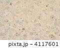 琉球石灰岩 石壁 壁の写真 4117601
