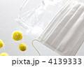 花粉症イメージ 4139333