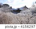 東福寺 4156297