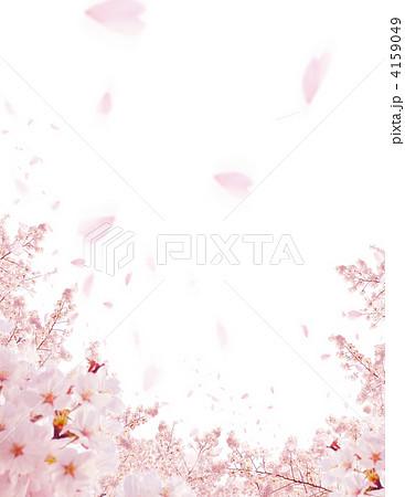 桜のコラージュ写真 4159049
