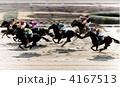 サラブレッド 競走馬 馬の写真 4167513