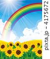 花畑 ひまわり畑 向日葵畑のイラスト 4175672