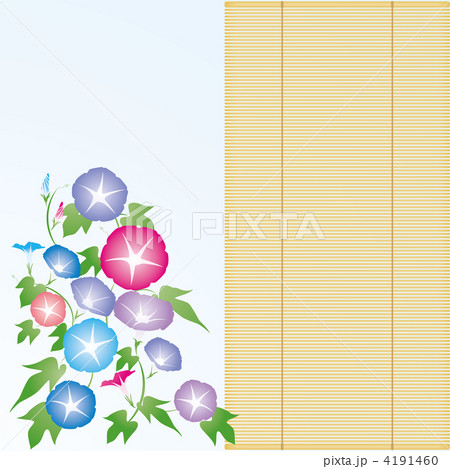 朝顔・すだれ-03■あさがお・アサガオ・簾・夏イメージ・カラフル 4191460