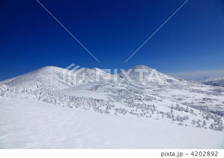 冬の八甲田山頂 4202892