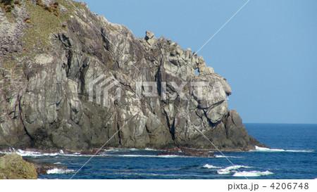 徳浜のライオン岩 4206748