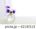 アンティークの小瓶とビオラ  4216315