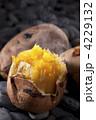 唐芋 安納芋 あんのう芋の写真 4229132