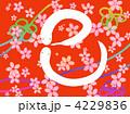 白蛇 巳 干支のイラスト 4229836