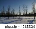 雪景色 4283329