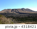 春の三原山 4318421