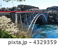 春の西海橋④ 4329359