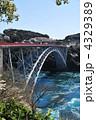 春の西海橋⑤ 4329389