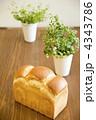 世田谷パン 食パン パンの写真 4343786