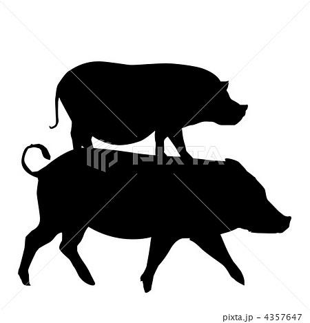 動物シルエット 豚 グラフィックのイラスト素材 4357647 Pixta