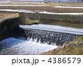 農業用水路 春の用水路 水田用水路 4386579