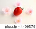ミニトマト リコピン フレッシュの写真 4409379