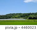 田園風景 4460023