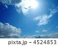 空 青空 雲の写真 4524853