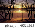 暮れる田沢湖(冬) 4531898