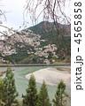 天竜川 花 川原の写真 4565858