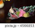砂糖菓子 こんぺいとう コンペイトウの写真 4566853