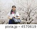 高校生 女性 桜の写真 4570619