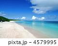 ニシハマ 夏の海 海の写真 4579995