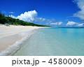 ニシハマ 夏の海 海の写真 4580009