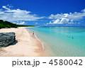 ニシハマ 夏の海 海の写真 4580042