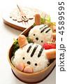 おべんとう 弁当 お弁当の写真 4589595