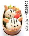 おべんとう 弁当 お弁当の写真 4589602
